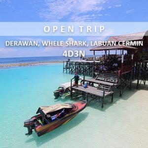 open trip derawan wheleshark labuan cermin alamindonesia