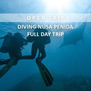 open trip diving nusa penida alamindonesia