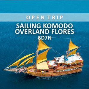 open trip sailing komodo overland flores alamindonesia