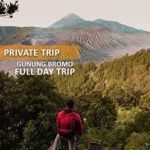 private trip bromo alamindonesia