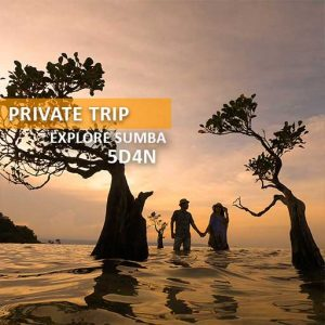 private trip explore sumba alamindonesia