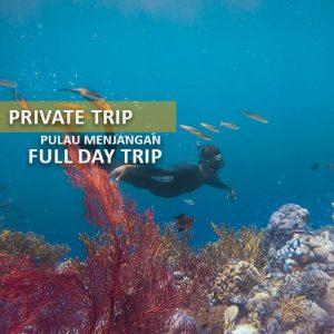 private trip pulau menjangan alamindonesia