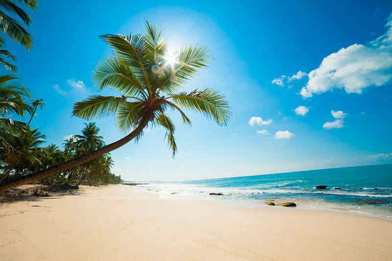 6 Wisata Pantai Sumba Yang Miliki Pemandangan Yang Mempesona