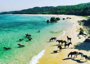 Wisata Pantai Nihiwatu