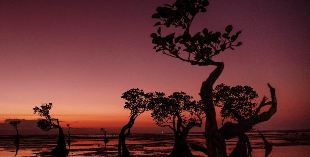 Menangkap Senja Eksotis di Pantai Walakiri Sumba Timur